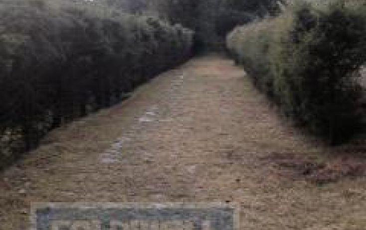 Foto de terreno habitacional en venta en km13 carretera monumento miguel aleman a valle de bravo rancheria san miguel obispo, san martín obispo, donato guerra, estado de méxico, 1427421 no 12