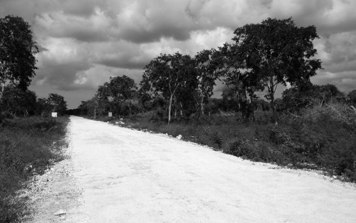 Foto de terreno habitacional en venta en  , komchen, mérida, yucatán, 1092639 No. 04