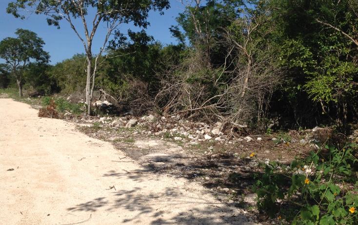 Foto de terreno habitacional en venta en  , komchen, mérida, yucatán, 1128815 No. 10