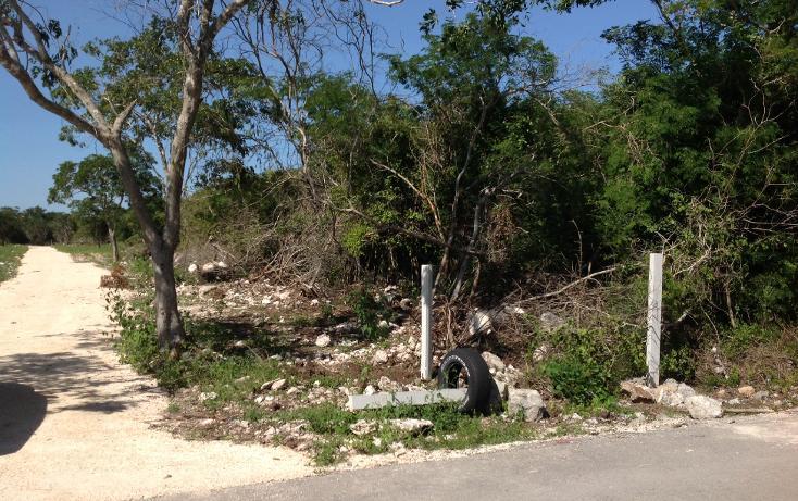 Foto de terreno habitacional en venta en  , komchen, mérida, yucatán, 1128815 No. 11