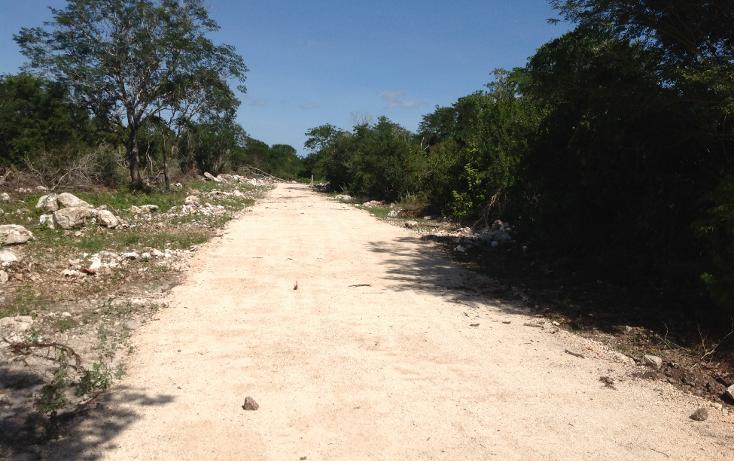 Foto de terreno habitacional en venta en  , komchen, mérida, yucatán, 1128815 No. 12