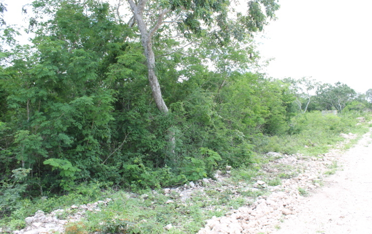 Foto de terreno habitacional en venta en  , komchen, mérida, yucatán, 1237743 No. 03