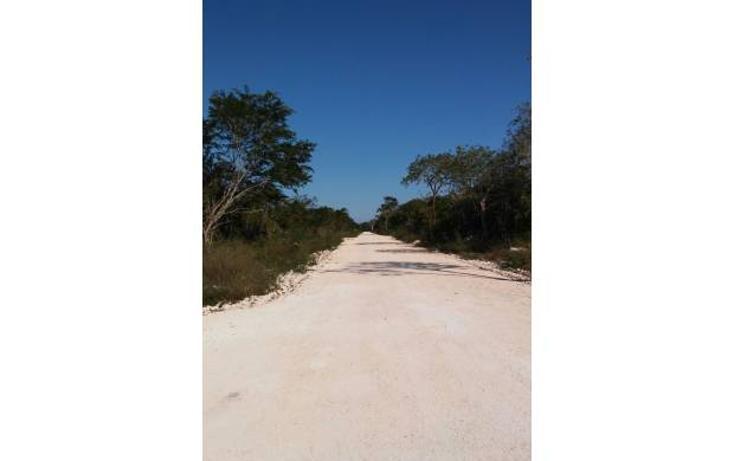Foto de terreno habitacional en venta en  , komchen, mérida, yucatán, 1245283 No. 02