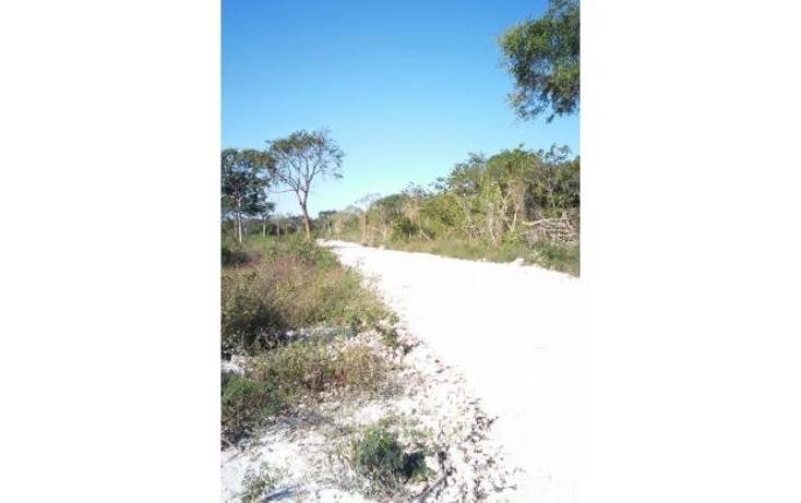 Foto de terreno habitacional en venta en  , komchen, mérida, yucatán, 1245283 No. 03