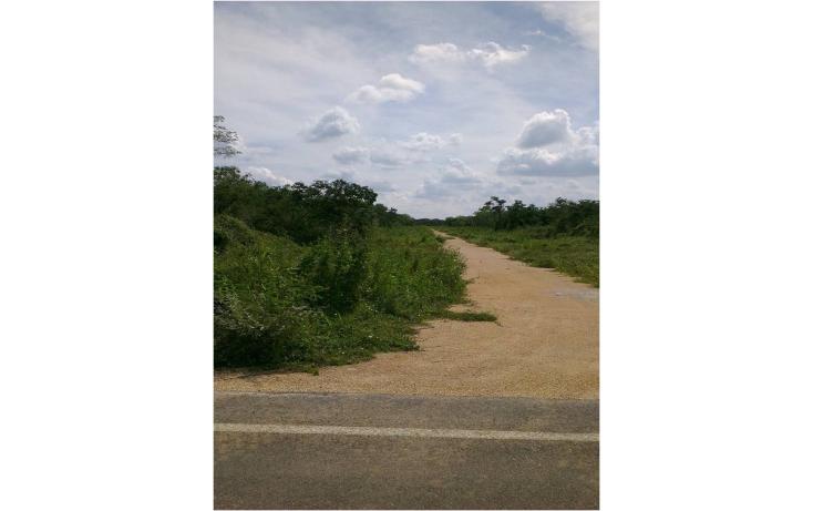 Foto de terreno comercial en venta en  , komchen, mérida, yucatán, 1267613 No. 07