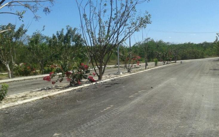 Foto de terreno habitacional en venta en  , komchen, m?rida, yucat?n, 1275137 No. 05
