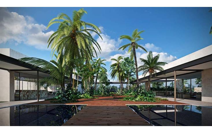 Foto de terreno habitacional en venta en  , komchen, mérida, yucatán, 2001642 No. 22