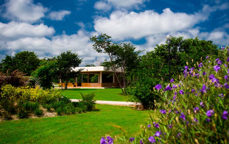 Foto de terreno habitacional en venta en  , komchen, m?rida, yucat?n, 2043400 No. 05
