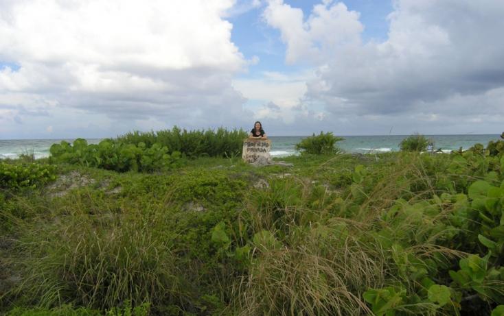 Foto de terreno habitacional en venta en, kuchumatán, bacalar, quintana roo, 943123 no 03