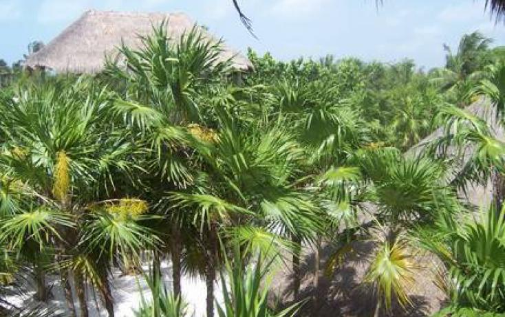 Foto de terreno comercial en venta en, kuchumatán, bacalar, quintana roo, 945947 no 02
