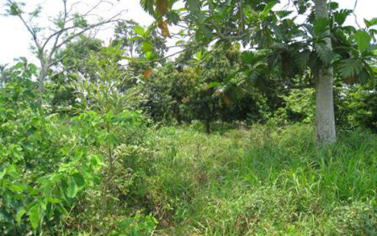 Foto de terreno habitacional en venta en l1 mz6 sn, coronel traconis 1ra sección la isla, centro, tabasco, 1749161 no 01
