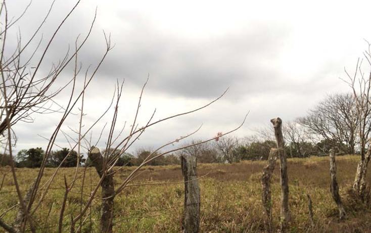 Foto de terreno habitacional en venta en  , la aguada, alvarado, veracruz de ignacio de la llave, 1288493 No. 01