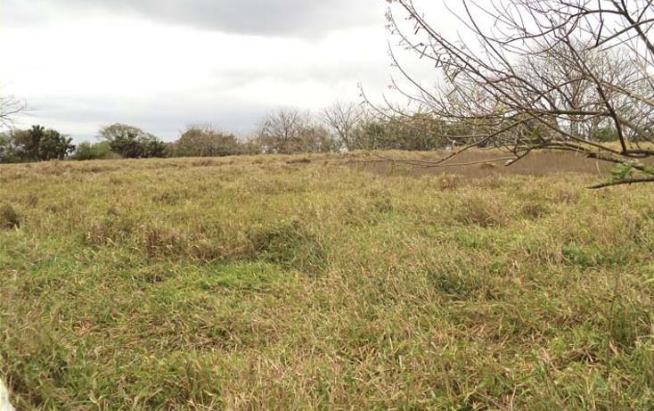 Foto de terreno habitacional en venta en  , la aguada, alvarado, veracruz de ignacio de la llave, 1288493 No. 02