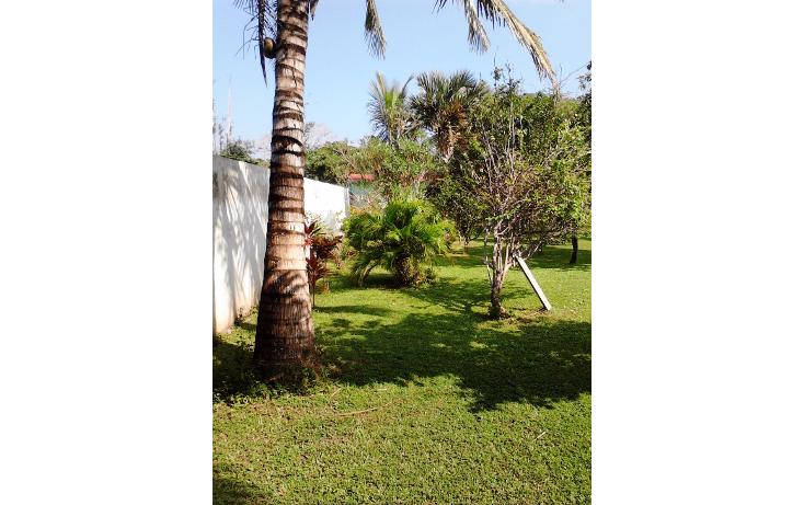 Foto de casa en venta en  , la aguada, alvarado, veracruz de ignacio de la llave, 1374565 No. 06