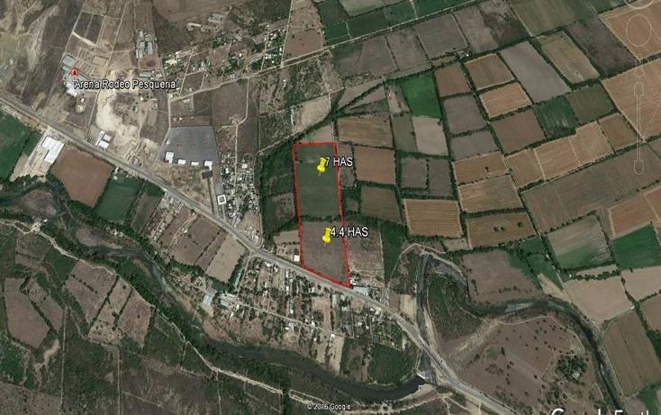Foto de terreno comercial en venta en  , la arena, pesquería, nuevo león, 1757114 No. 01