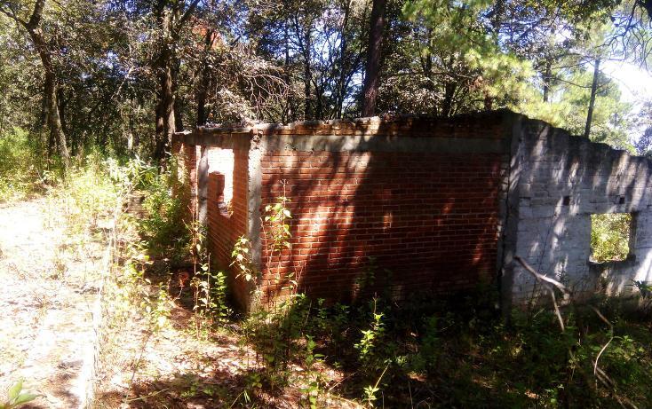 Foto de casa en venta en  , la arrastradera, villa del carbón, méxico, 3432433 No. 06