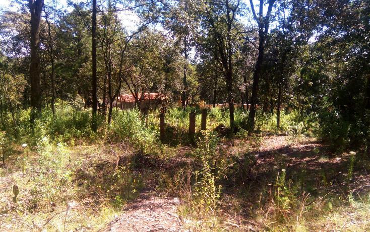 Foto de casa en venta en  , la arrastradera, villa del carbón, méxico, 3432433 No. 07
