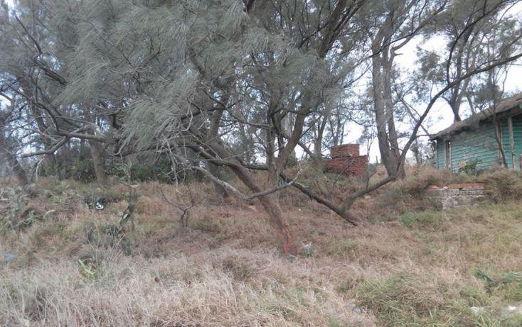 Foto de terreno habitacional en venta en, la barra, ciudad madero, tamaulipas, 1808784 no 02