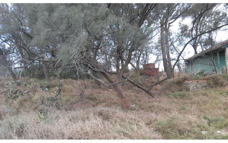 Foto de terreno habitacional en venta en  , la barra, ciudad madero, tamaulipas, 1808784 No. 02