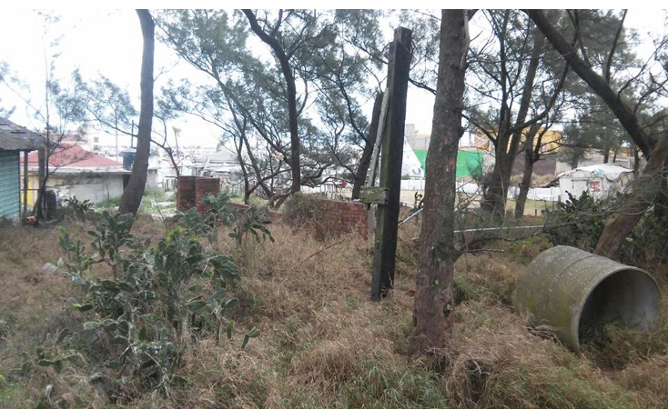 Foto de terreno habitacional en venta en  , la barra, ciudad madero, tamaulipas, 1808784 No. 04