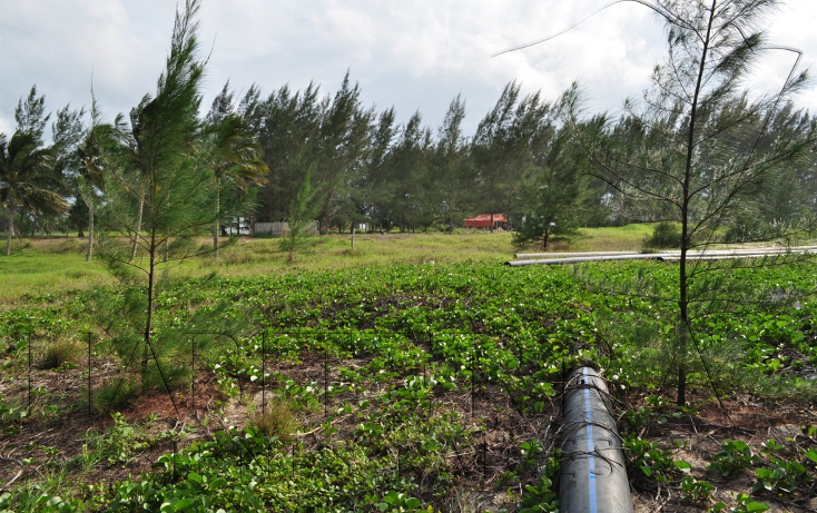 Foto de terreno comercial en venta en  , la barra norte, tuxpan, veracruz de ignacio de la llave, 941869 No. 13