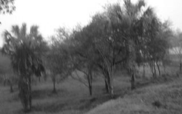 Foto de terreno habitacional en venta en  , la boca, santiago, nuevo león, 1070471 No. 07