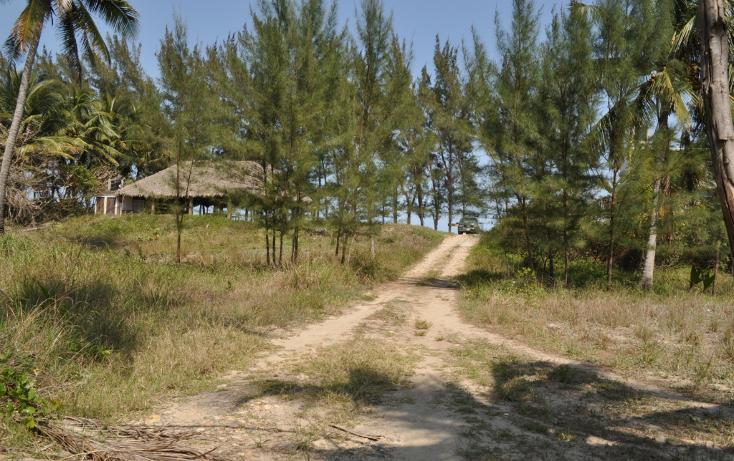 Foto de terreno habitacional en venta en  , la calzada, tuxpan, veracruz de ignacio de la llave, 1097949 No. 17