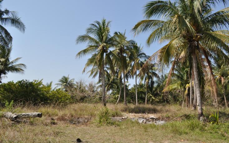 Foto de terreno habitacional en venta en  , la calzada, tuxpan, veracruz de ignacio de la llave, 1097949 No. 18