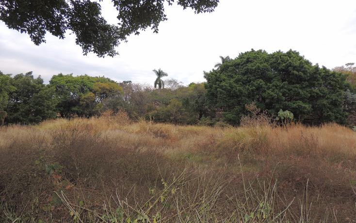 Foto de terreno habitacional en venta en  , la cañada, cuernavaca, morelos, 1723124 No. 01