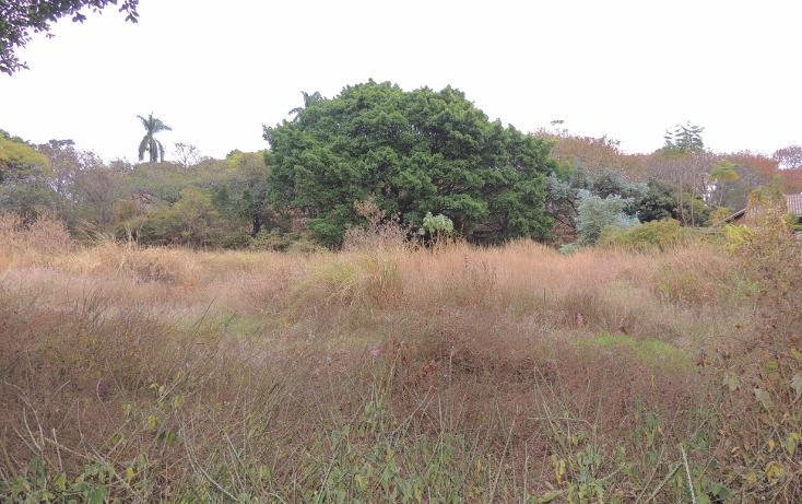 Foto de terreno habitacional en venta en  , la cañada, cuernavaca, morelos, 1723124 No. 03