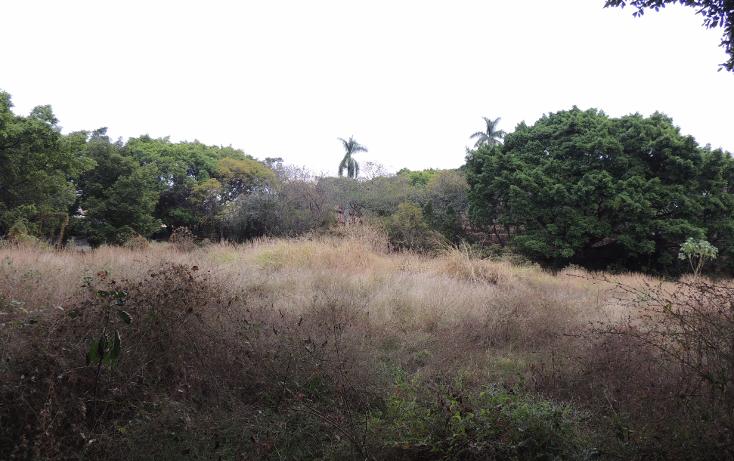 Foto de terreno habitacional en venta en  , la cañada, cuernavaca, morelos, 1723124 No. 04