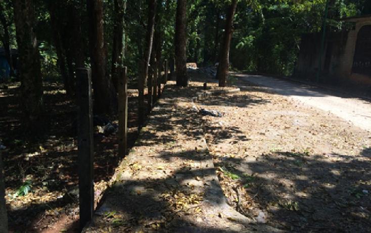 Foto de terreno habitacional en venta en  , la cañada, palenque, chiapas, 1877658 No. 03