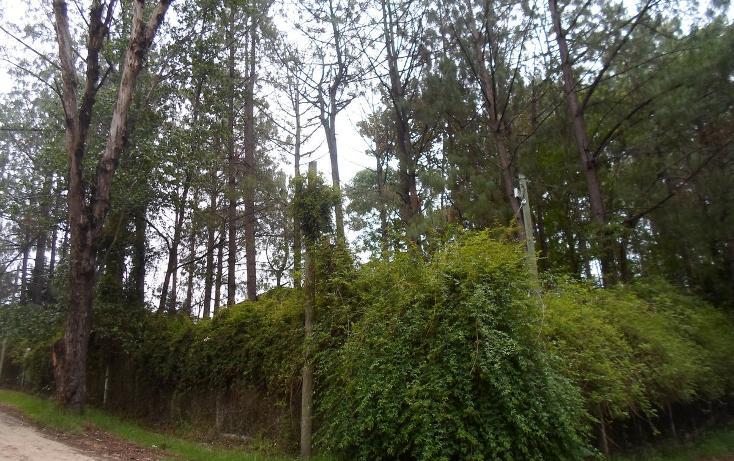 Foto de terreno habitacional en venta en, la cañada, san cristóbal de las casas, chiapas, 1877626 no 01