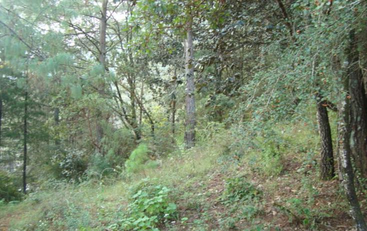 Foto de terreno habitacional en venta en  , la cañada, san cristóbal de las casas, chiapas, 627133 No. 03