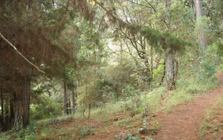 Foto de terreno habitacional en venta en  , la cañada, san cristóbal de las casas, chiapas, 627133 No. 05