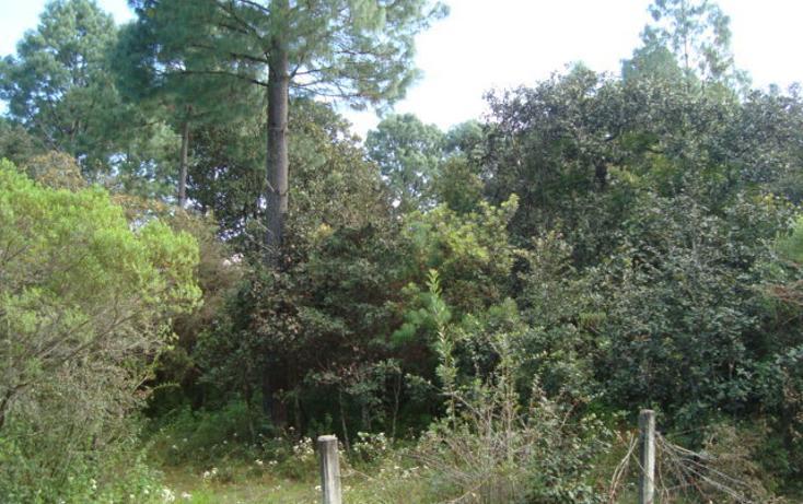 Foto de terreno habitacional en venta en  , la cañada, san cristóbal de las casas, chiapas, 627133 No. 10