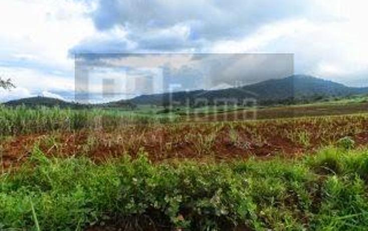 Foto de terreno habitacional en venta en  , la cantera, tepic, nayarit, 1864436 No. 05