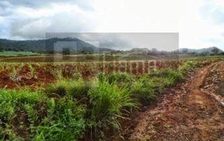 Foto de terreno habitacional en venta en  , la cantera, tepic, nayarit, 1864436 No. 06