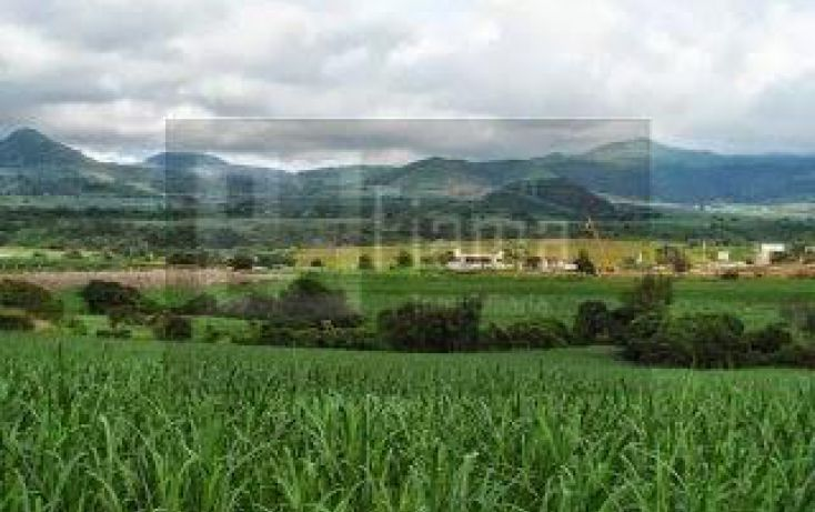 Foto de terreno habitacional en venta en, la cantera, tepic, nayarit, 1864436 no 10