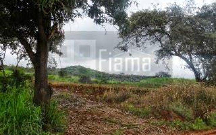 Foto de terreno habitacional en venta en, la cantera, tepic, nayarit, 1864436 no 13