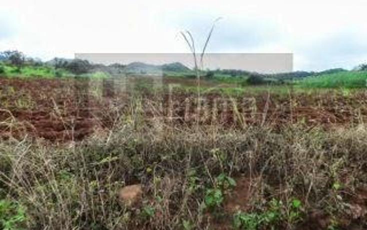 Foto de terreno habitacional en venta en  , la cantera, tepic, nayarit, 1864436 No. 15