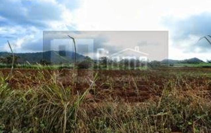 Foto de terreno habitacional en venta en  , la cantera, tepic, nayarit, 1864436 No. 17