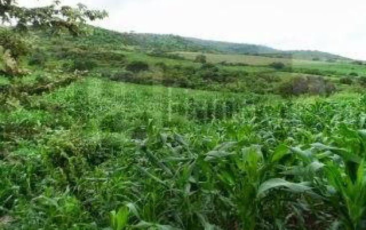 Foto de terreno habitacional en venta en, la cantera, tepic, nayarit, 1864436 no 18