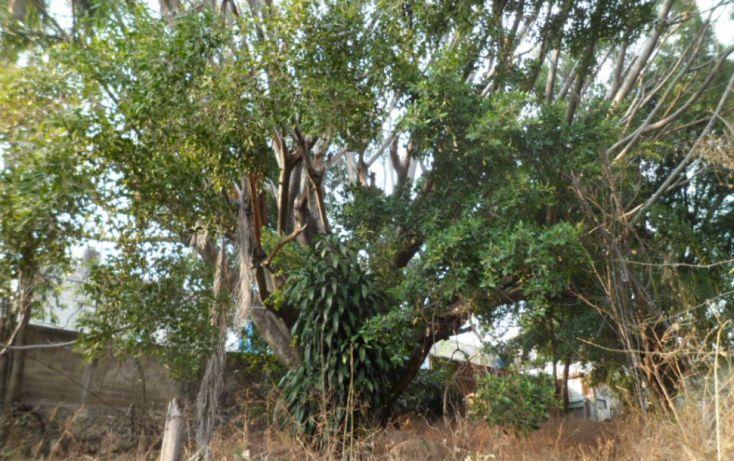 Foto de terreno comercial en venta en, la carolina, cuernavaca, morelos, 1039061 no 12