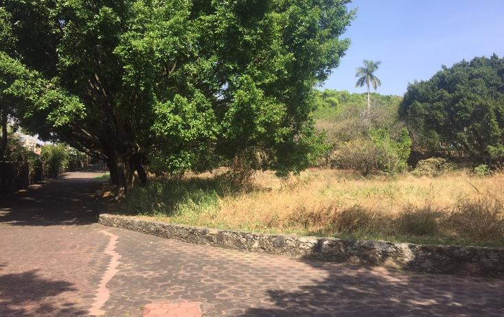 Foto de terreno habitacional en venta en  , la carolina, cuernavaca, morelos, 1801031 No. 01