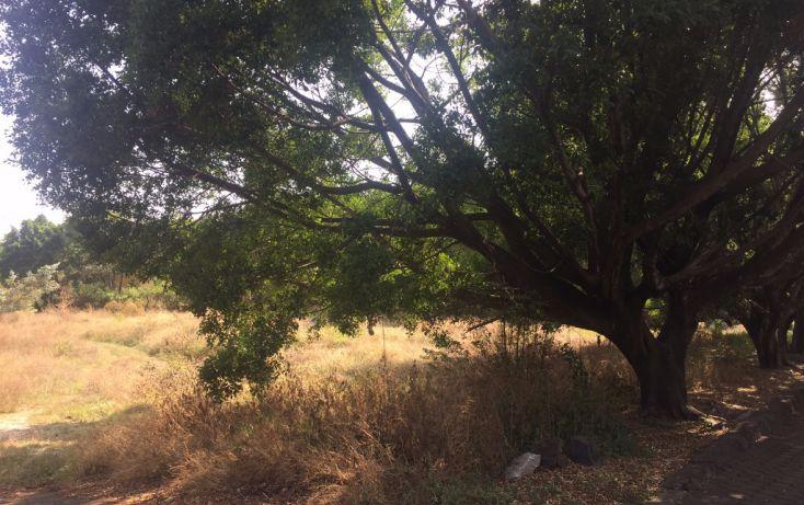 Foto de terreno habitacional en venta en, la carolina, cuernavaca, morelos, 1801031 no 02