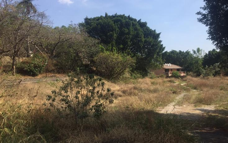 Foto de terreno habitacional en venta en  , la carolina, cuernavaca, morelos, 1801031 No. 06