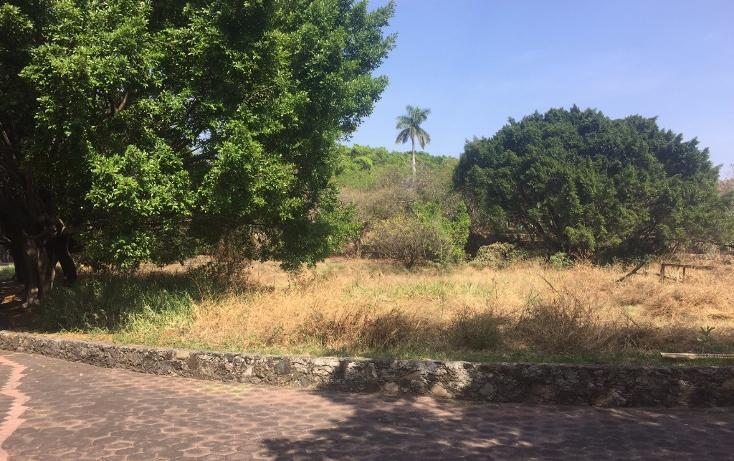Foto de terreno habitacional en venta en  , la carolina, cuernavaca, morelos, 1801031 No. 07