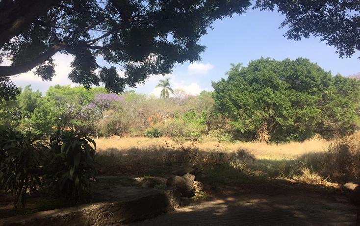 Foto de terreno habitacional en venta en, la carolina, cuernavaca, morelos, 1801031 no 09