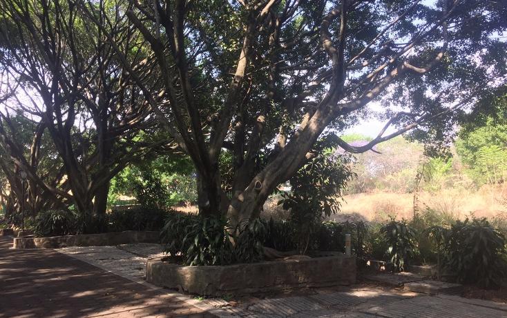 Foto de terreno habitacional en venta en  , la carolina, cuernavaca, morelos, 1801031 No. 10
